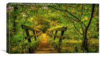 Millers Dale footbridge Darbyshire , Canvas Print