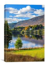 Loch Alvie Reflections, Canvas Print