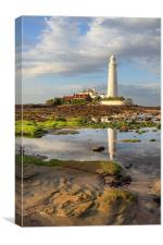 Low Tide at St Mary's Lighthouse , Canvas Print