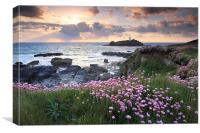 Thrift at Sunset (Godrevy).tif, Canvas Print