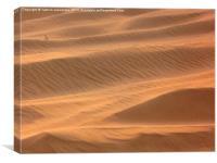 Dunes , Canvas Print