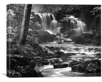 Sable Falls, Canvas Print