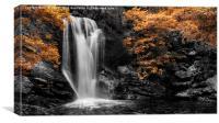 Arklet Falls, Inversnaid, Canvas Print