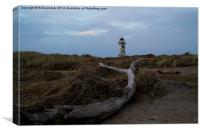 Driftwood and the Lighthouse, Canvas Print