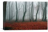 Foggy Forest, Canvas Print