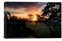 Sunrise behind trees, Canvas Print