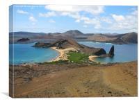 Galapagos Islands, Canvas Print