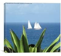 Sailing in Barbados Round the Island Race, Canvas Print