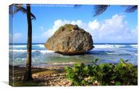 Bathsheba, East Coast of Barbados, Canvas Print