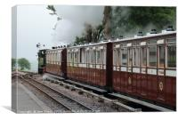 The Woody Bay Train Line, Canvas Print
