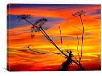 Sunset #2, Canvas Print