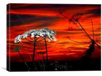 Sunset #3 , Canvas Print