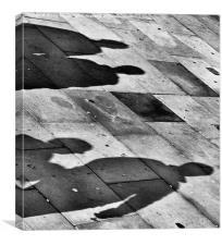 Shadows on the ground, Canvas Print