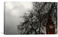 Big Ben as seen through the branches of a tree, Canvas Print