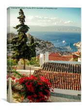 On top of Hydra, Canvas Print