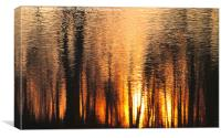 The forest of reflection, Canvas Print
