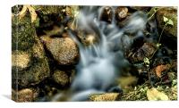 The Beauty of Water, Canvas Print
