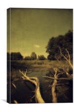 Fallen, Canvas Print