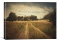 Across the meadow, Canvas Print