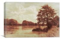 Caramel impressions, Canvas Print