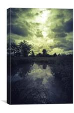 Trekking on the marshlands, Canvas Print