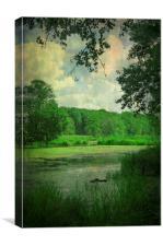 Kwietniowka Lake, Poland, Canvas Print