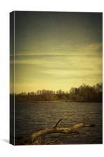 Along the river #9, Canvas Print
