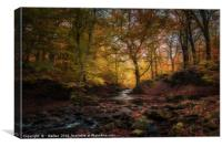 Autumn comes to Tockholes, Canvas Print