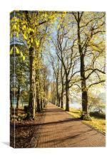 Avenham Park and the River Ribble, Canvas Print