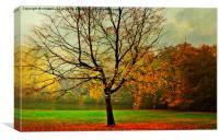 The Autumn Tree Hampstead  London , Canvas Print