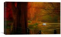 Autumn the season of colour  Hampstead-heath Lond, Canvas Print