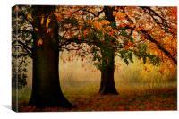 Autumn In Hamstead-heath London Uk , Canvas Print