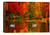 swan lake , Canvas Print