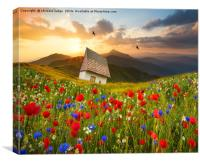 the meadow , Canvas Print