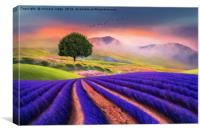 Heavenly Earth , Canvas Print