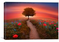 The little Red Tree on the hill , Canvas Print