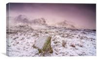 Snow storm, Canvas Print