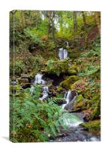 Waterfall at Hardcastle Crags, Canvas Print