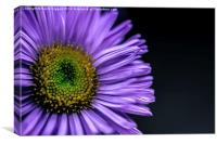 Flower Macro Photograph, Canvas Print