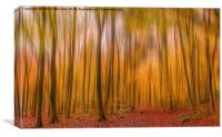 Delamere Abstract, Canvas Print