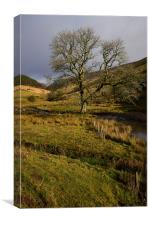 Brecon Beacons in some winter sunshine, Canvas Print
