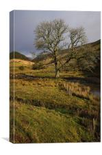 Brecon Beacons National Park in South Wales. An ar, Canvas Print