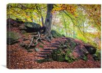 autumn in Padley Gorge , Canvas Print
