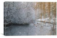 The frozen peace, Canvas Print