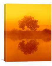The golden misty tree, Canvas Print