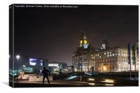Liver building at night, Canvas Print