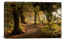 Meresands woodland, Canvas Print