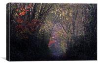Autumns Arch, Canvas Print