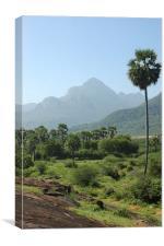Indian landscape, Canvas Print
