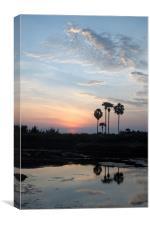 tropical sunrise, Canvas Print